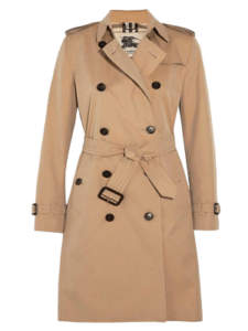himchistka-palto